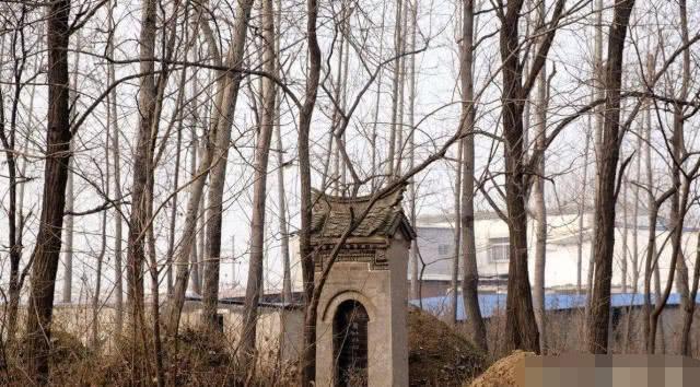 祖坟对中国人的意义是什么,你知道吗?