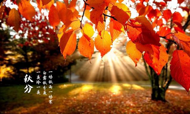 今日秋分,你知道秋分吃什么最养生吗?
