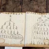跨越337年后的姜氏宗亲凭着一本老族谱寻根