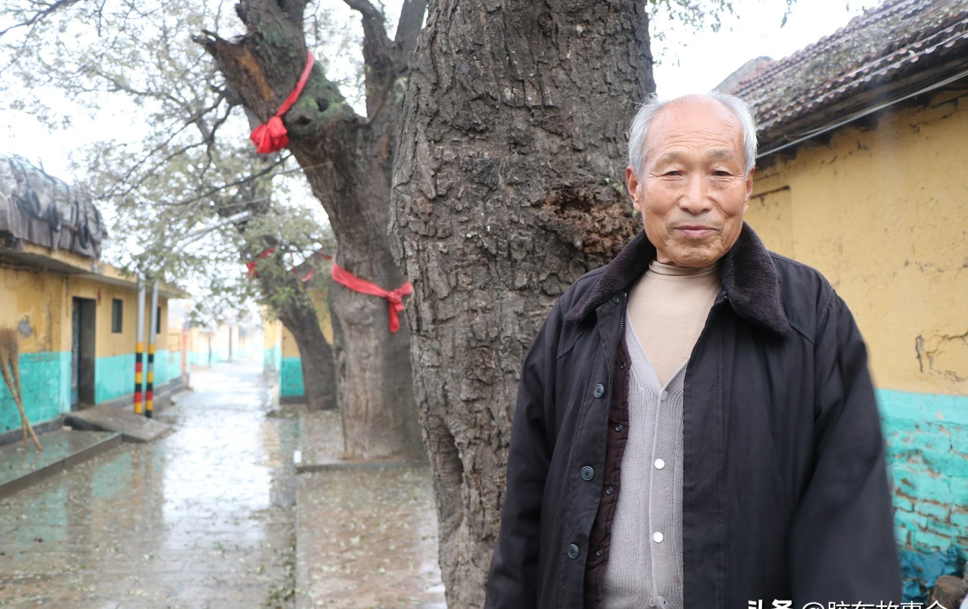 拜访莱阳战氏族谱修撰者,前发坊村81岁的战世典先生