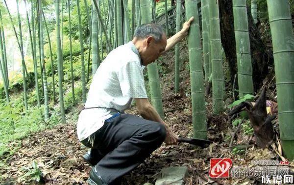 古老的指尖技艺——肖氏竹编